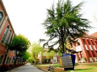 Sino-British College  фото 6