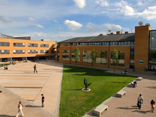 University of Surrey (ТОП 37)