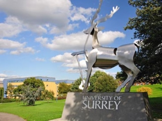 University of Surrey (ТОП 37) фото 9