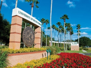 University of South Florida, INTO  фото 1
